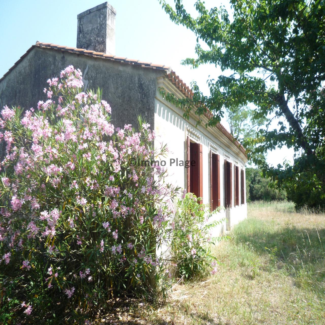 Image_2, Maisons, Le Verdon-sur-Mer, ref :2886