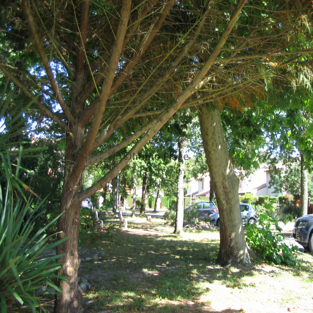Image_10, Maison, Soulac-sur-Mer, ref :3128