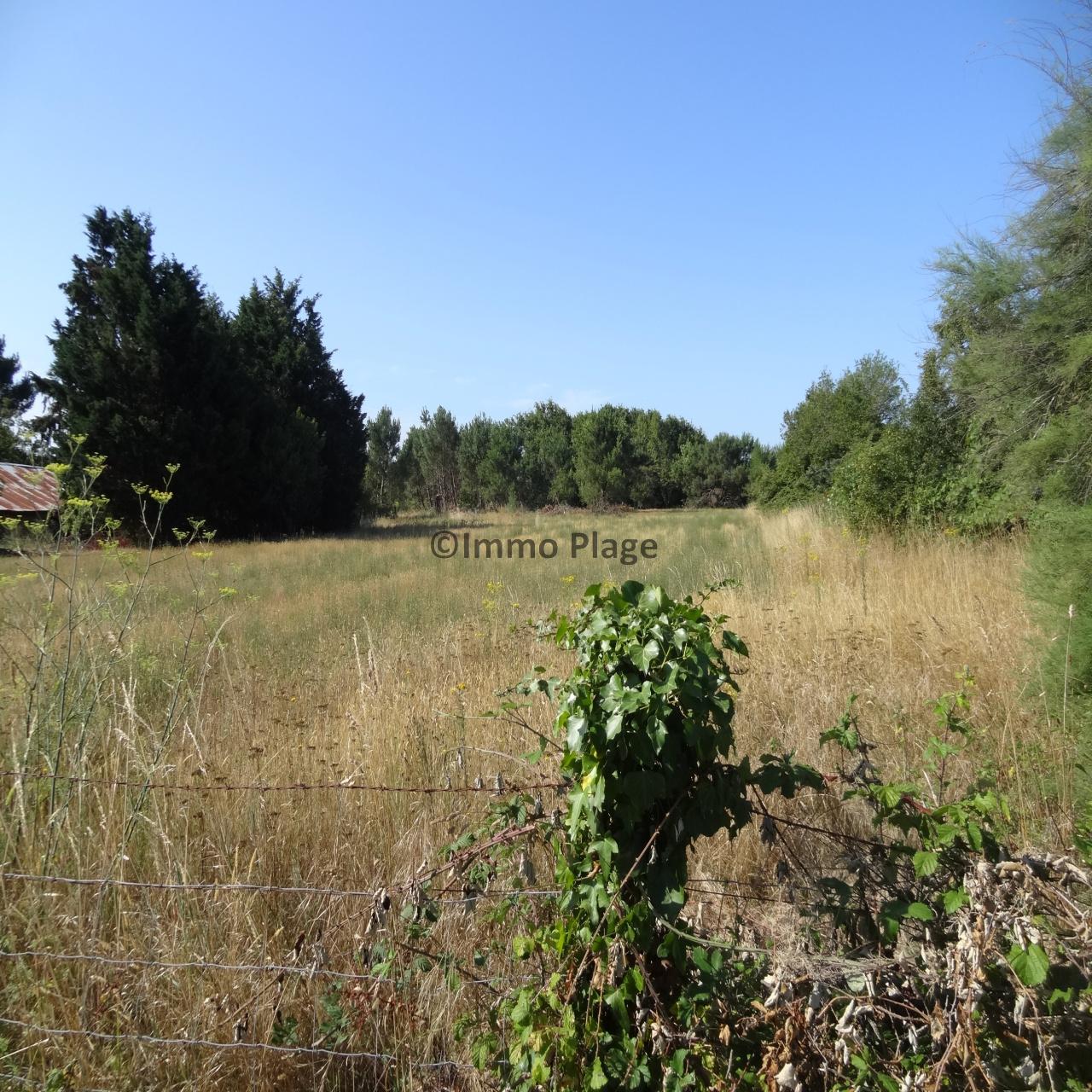 Image_2, Terrain, Talais, ref :3160A