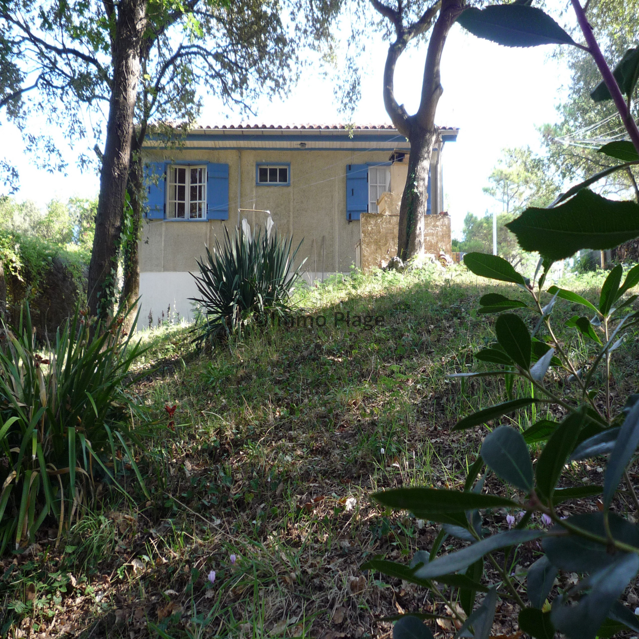 Image_1, Maison, Soulac-sur-Mer, ref :3102