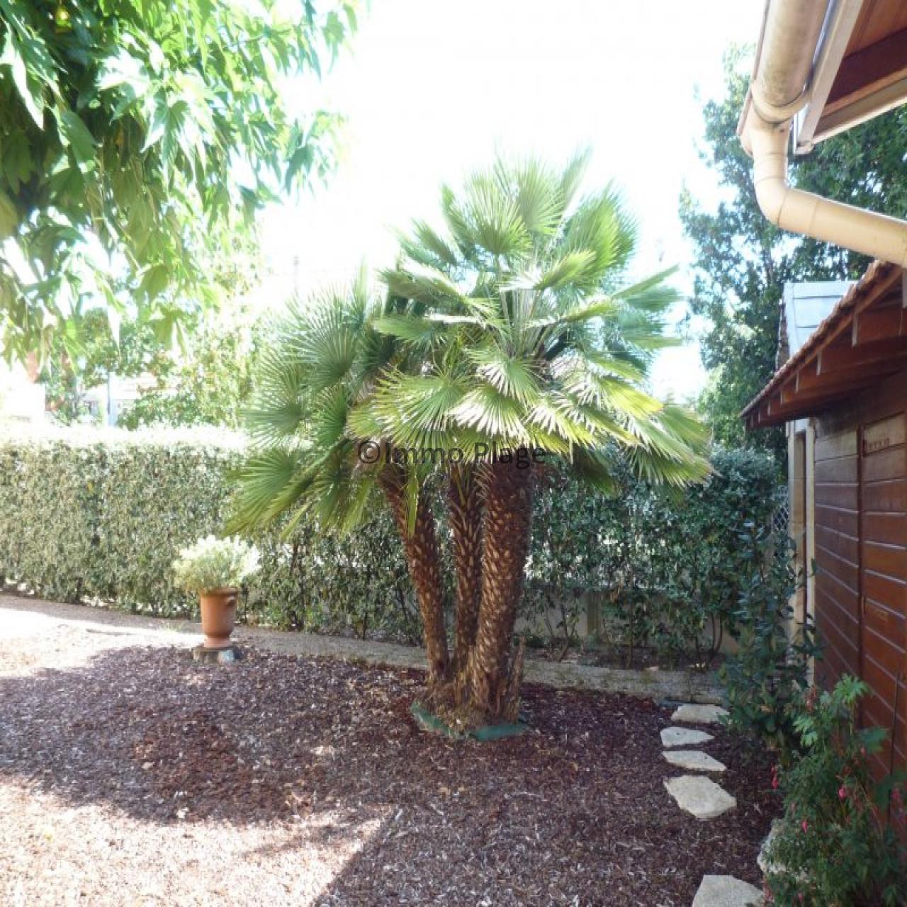 Image_13, Maisons, Soulac-sur-Mer, ref :VILL 0189